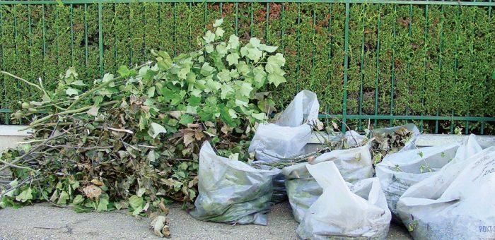 Distribution de sacs de déchets verts vendredi 9 avril